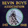 Bevin Boys Association badgeGallery